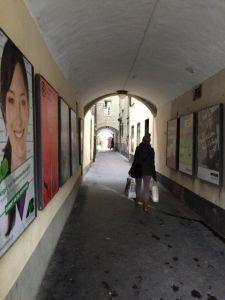 Bern 7